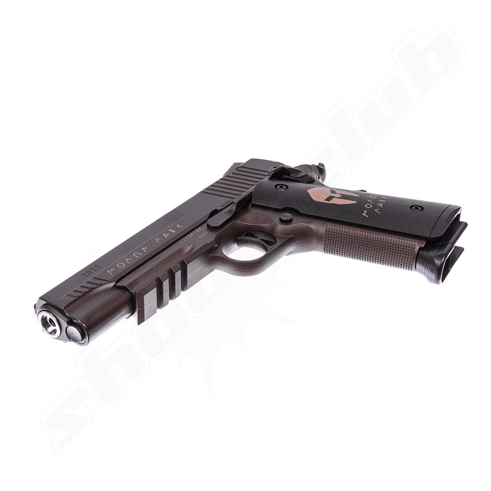 Sig Sauer 1911 Spartan CO2 Pistole Blowback 4,5 mm im Set Bild 3